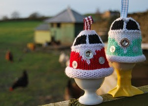 VW-Campervan-Egg-Cosy